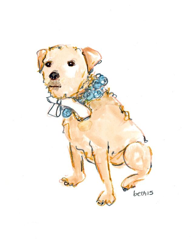 Terrier-blog