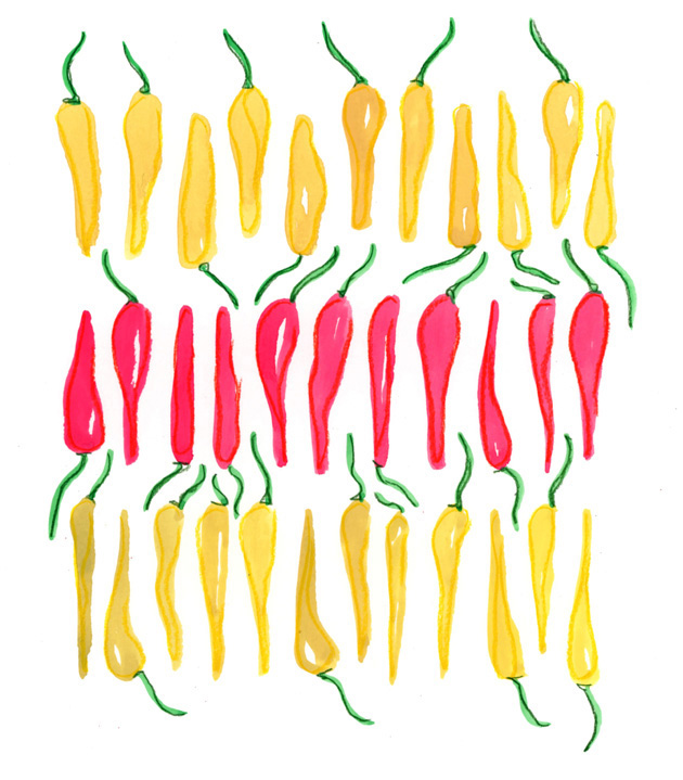 Scan peppers blog