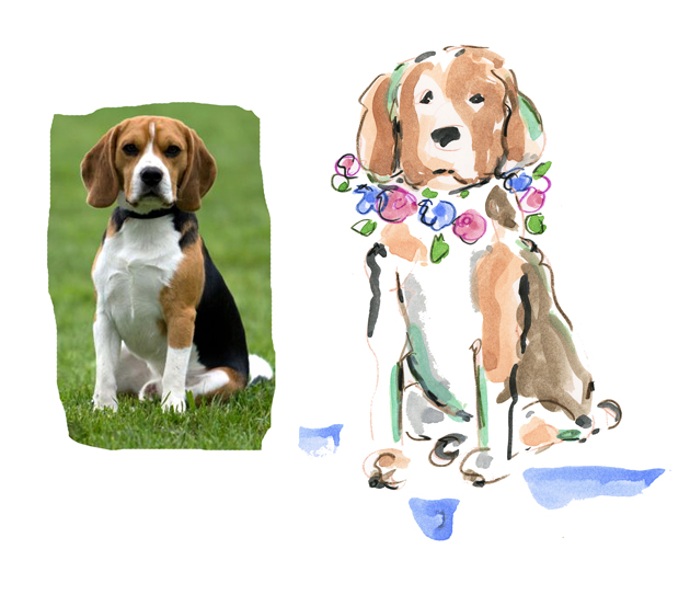 Beagle etsy blog
