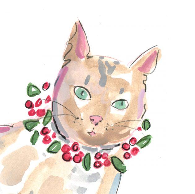 cat 1 v1