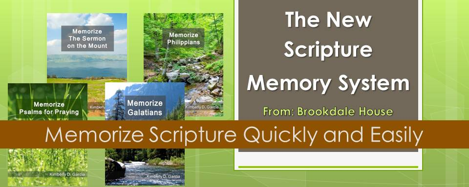 The New Scripture Memory System Flyer