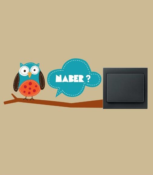 Baykuş Naber