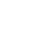 Bienal de Dança 2019