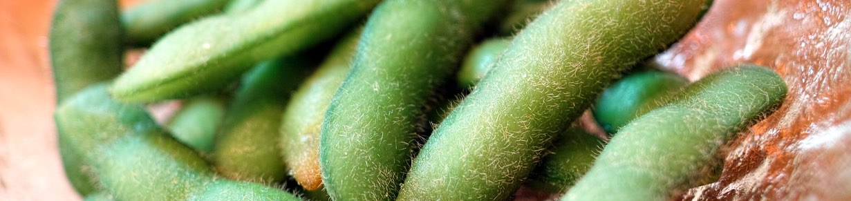 edamame weight loss