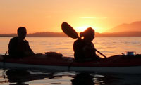 kayak tours in Tofino
