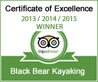 Black Bear Kayak on TripAdvisor