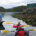 Tofino Kayaking Tours October, 2016