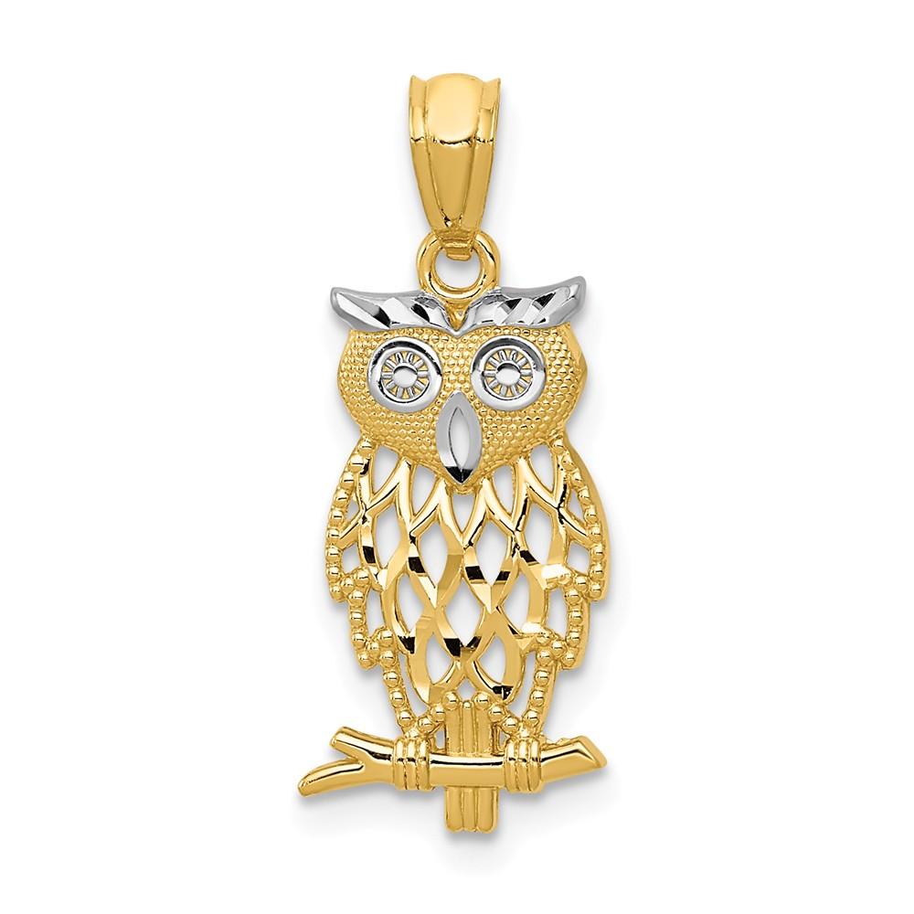 14K /& Rhodium Polished /& Textured Owl Pendant