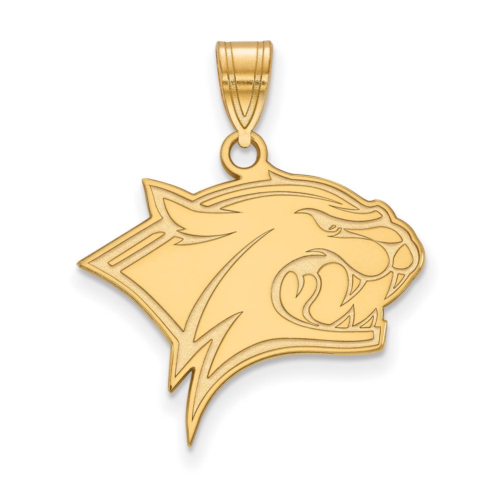 Hampshire   Pendant   Yellow   Large   NCAA   Gold   New