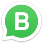 How to Use Whatsapp Business on Android?