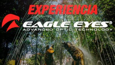Photo of Eagle Eyes®: opiniones reales