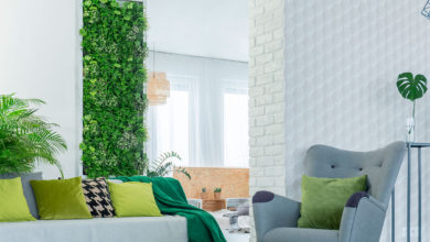 Photo of Tendencia en decoración: Muros verdes y sus beneficios