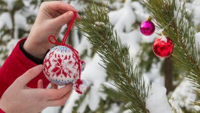 Photo of Increíbles tips de decoración navideña para jardines
