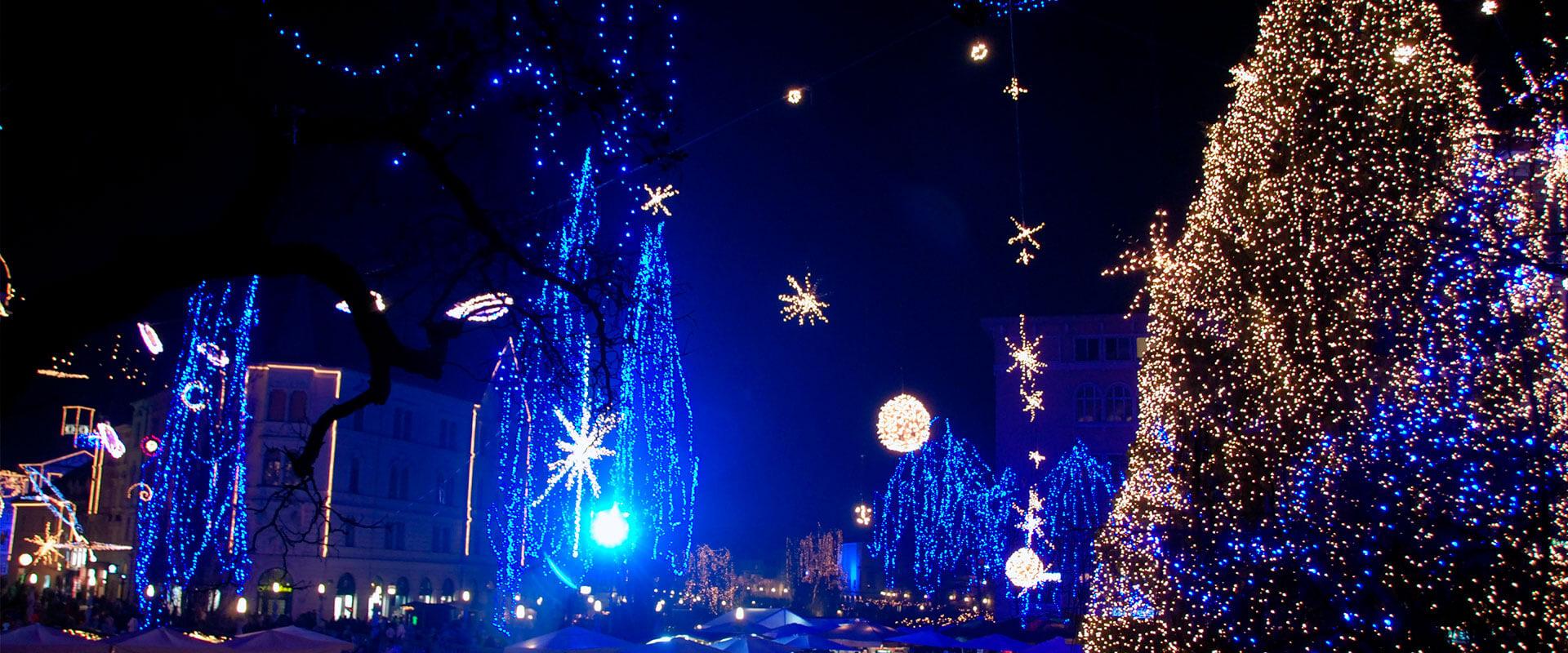 Fotografía de árboles de Navidad en países fríos.