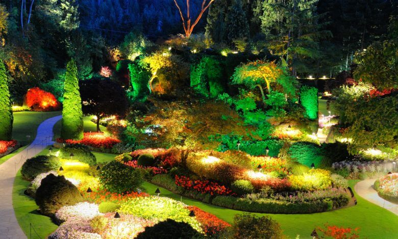 Photo of 5 ideas fáciles para decorar tu jardín con luces