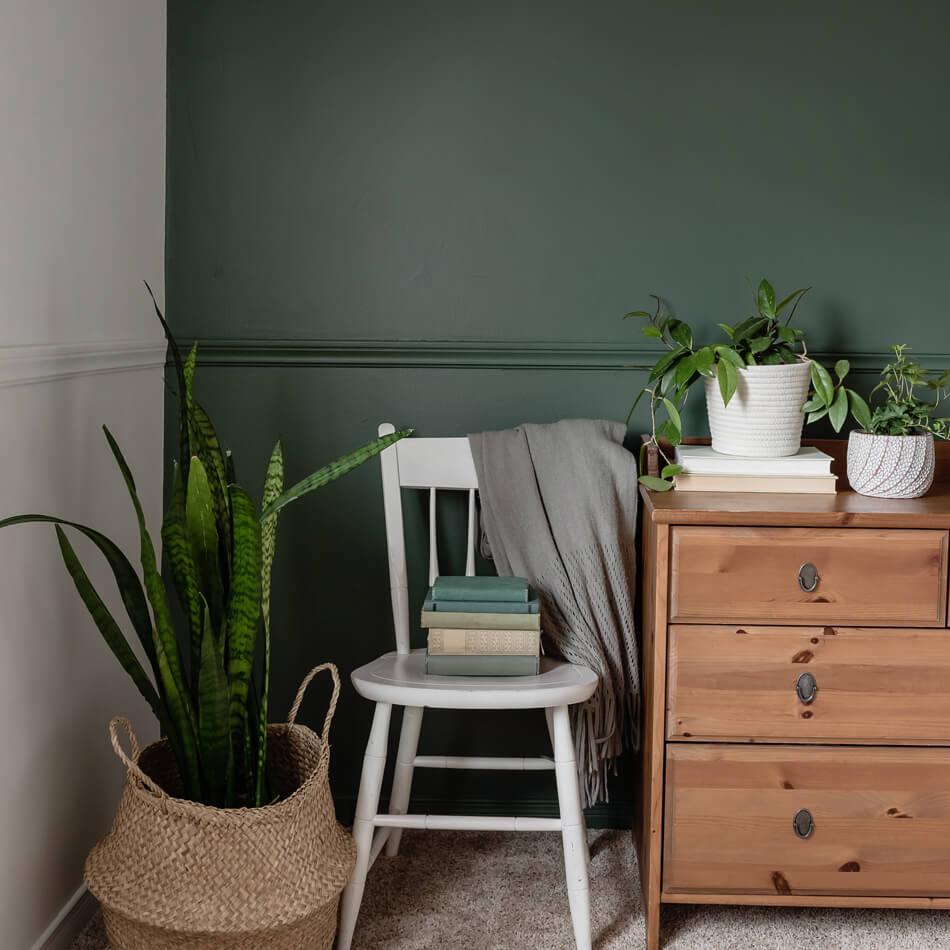 verde oliva tendencias de colores