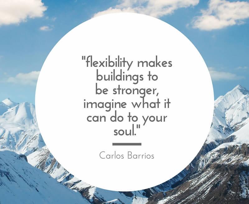 flexibility_quote
