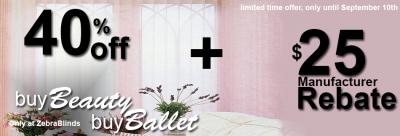 buy-beauty-buy-ballet - ZebraBlinds.com