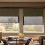 SHADING THAT AIDS CORPORATE PERFORMANCE – Dual Roller Shades