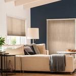 10 Best Blinds for Living Room Windows  ZebraBlinds