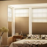 Is Perfect-Vue the best choice after understanding Window treatments?