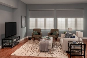Dual roller shades for media rooms