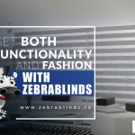 Get Both Functionality and Fashion with ZebraBlinds
