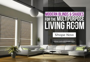 modern blinds for living room.  Modern Blinds and Shades of Living Rooms ZebraBlinds