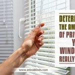 Determine The Amount of Privacy Your Windows Really Need