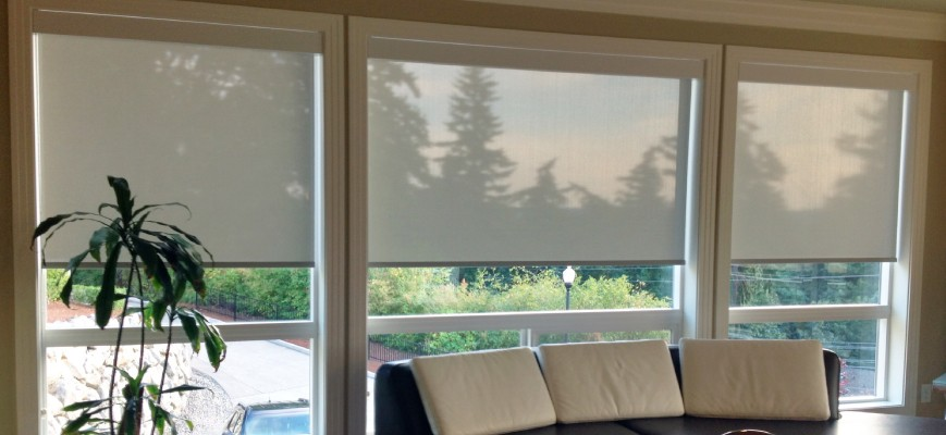 6 sliding glass door covering options for a perfect window dressing roller shades for sliding glass doors planetlyrics Images