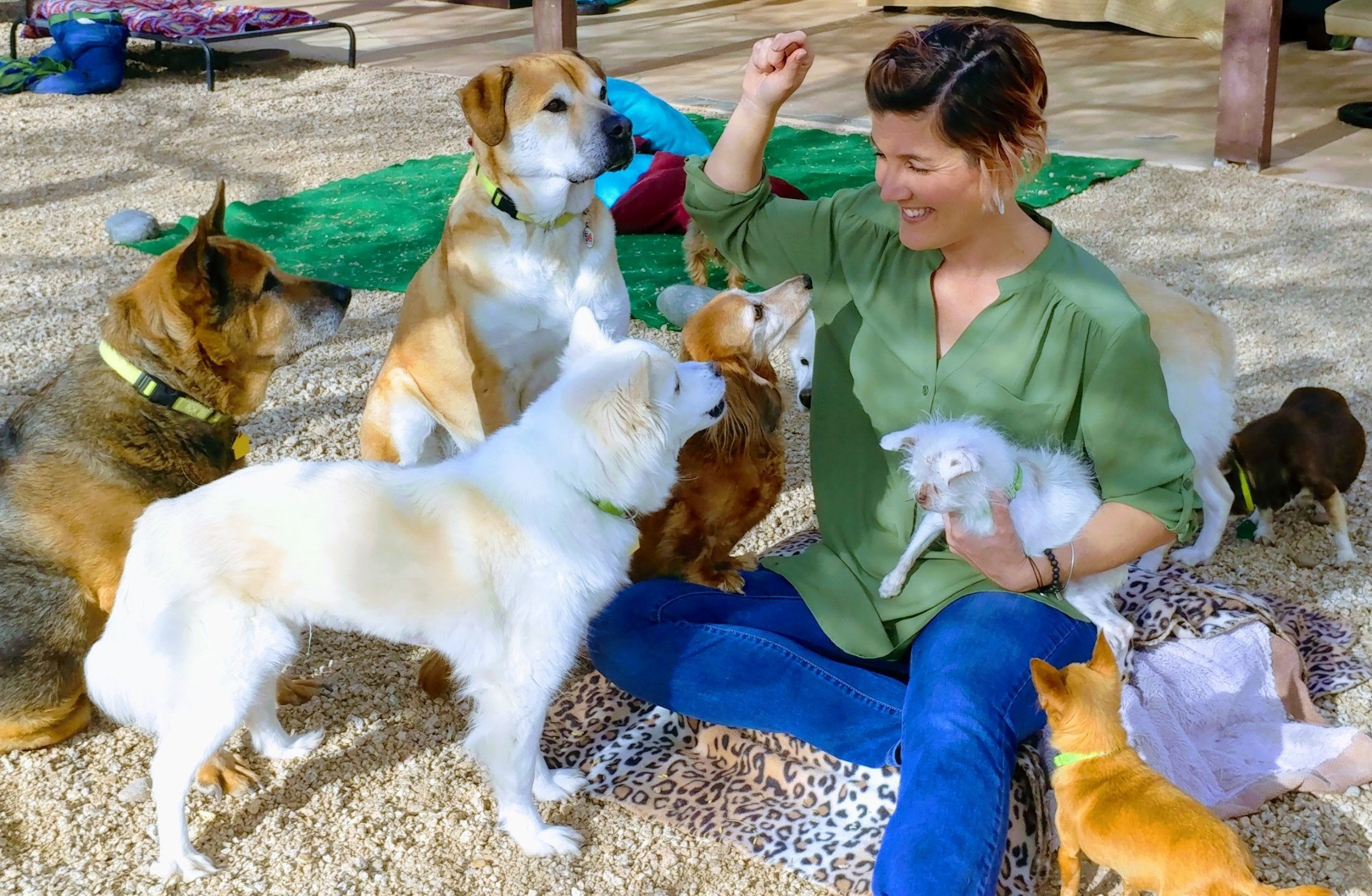 Emilee with the dogs at the sanctuary