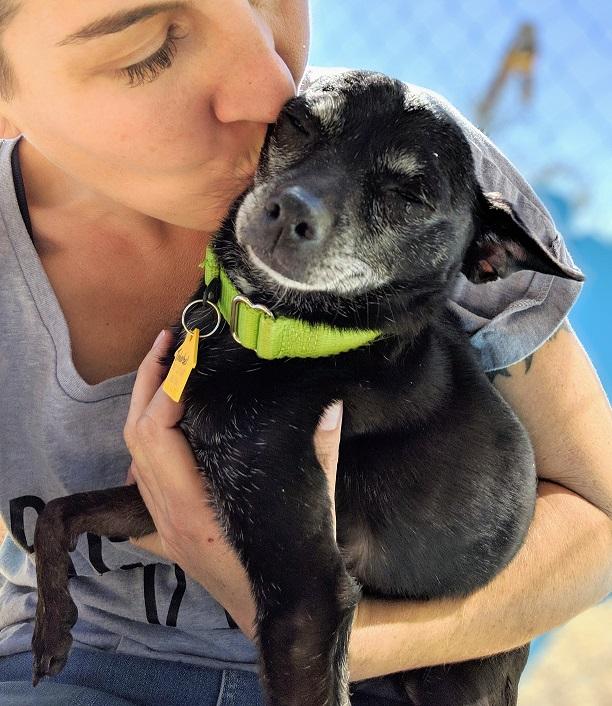 Emilee with senior dog
