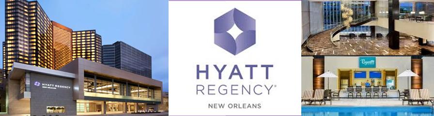 Hyatt Hotel Banner