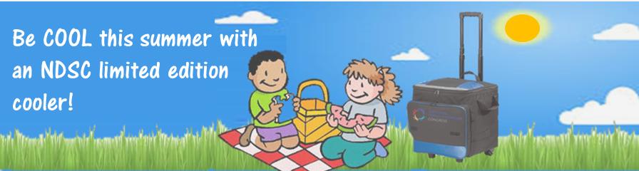 Summer online challenge banner