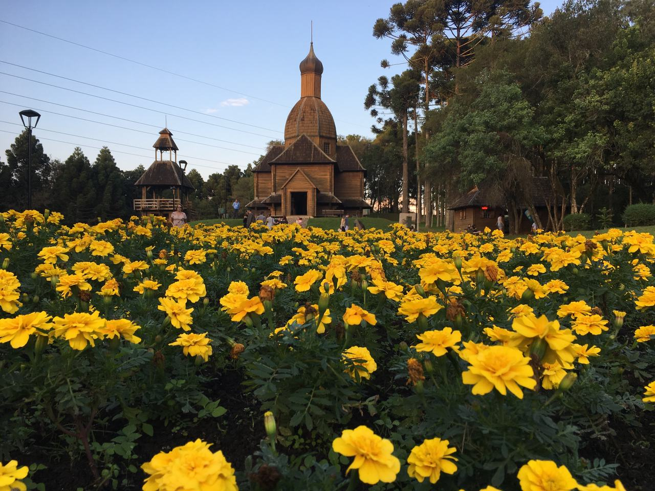 flores amarelas no memorial ucraniano