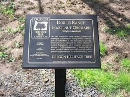 Dorris-Ranch-9.jpg