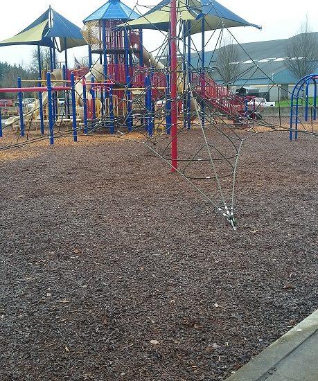 lively-park-13.jpg