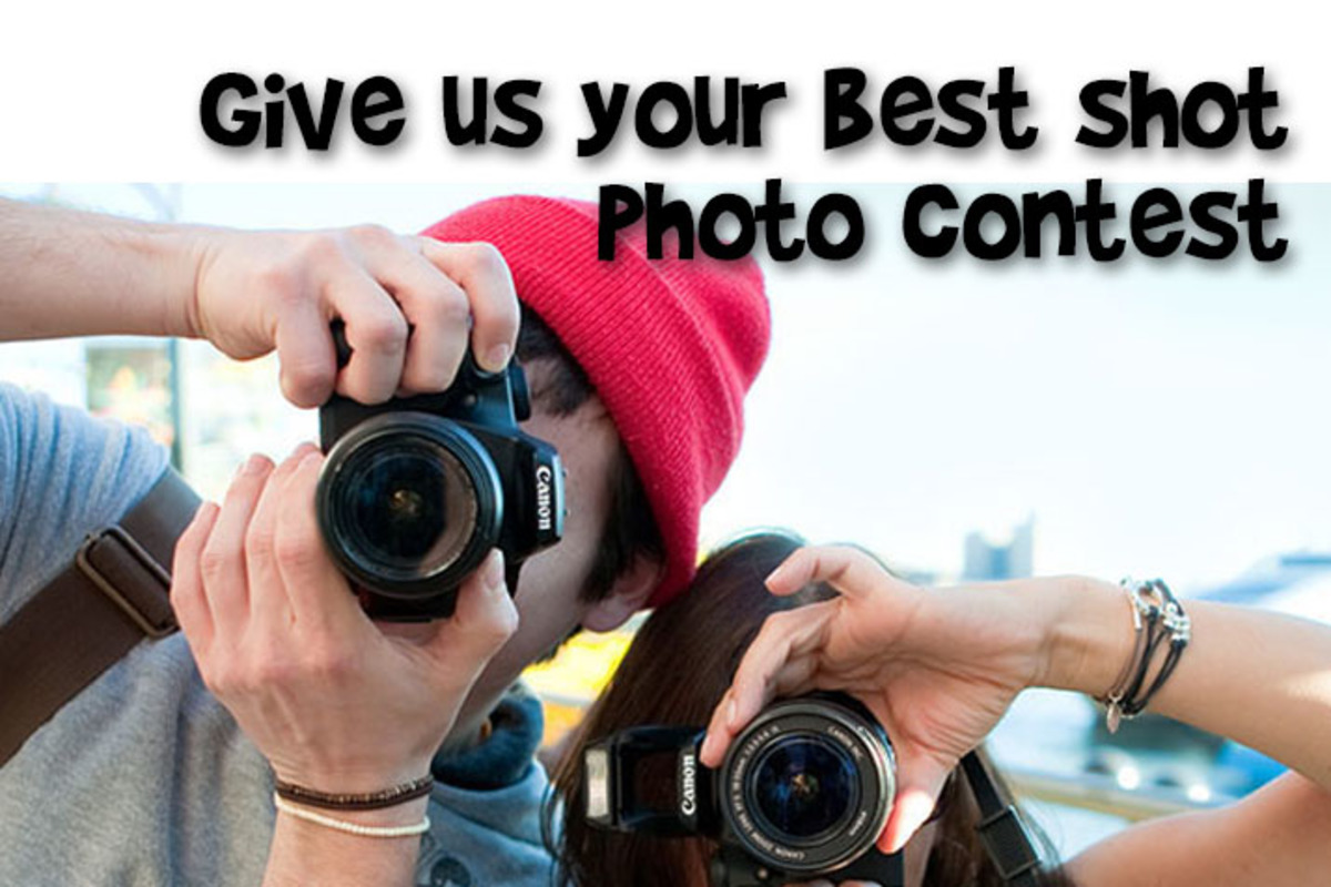 Give us your best shot photo contest