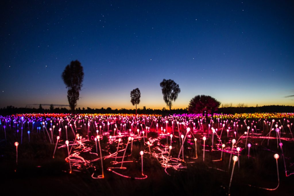 Australia - Uluru - Field of LIght