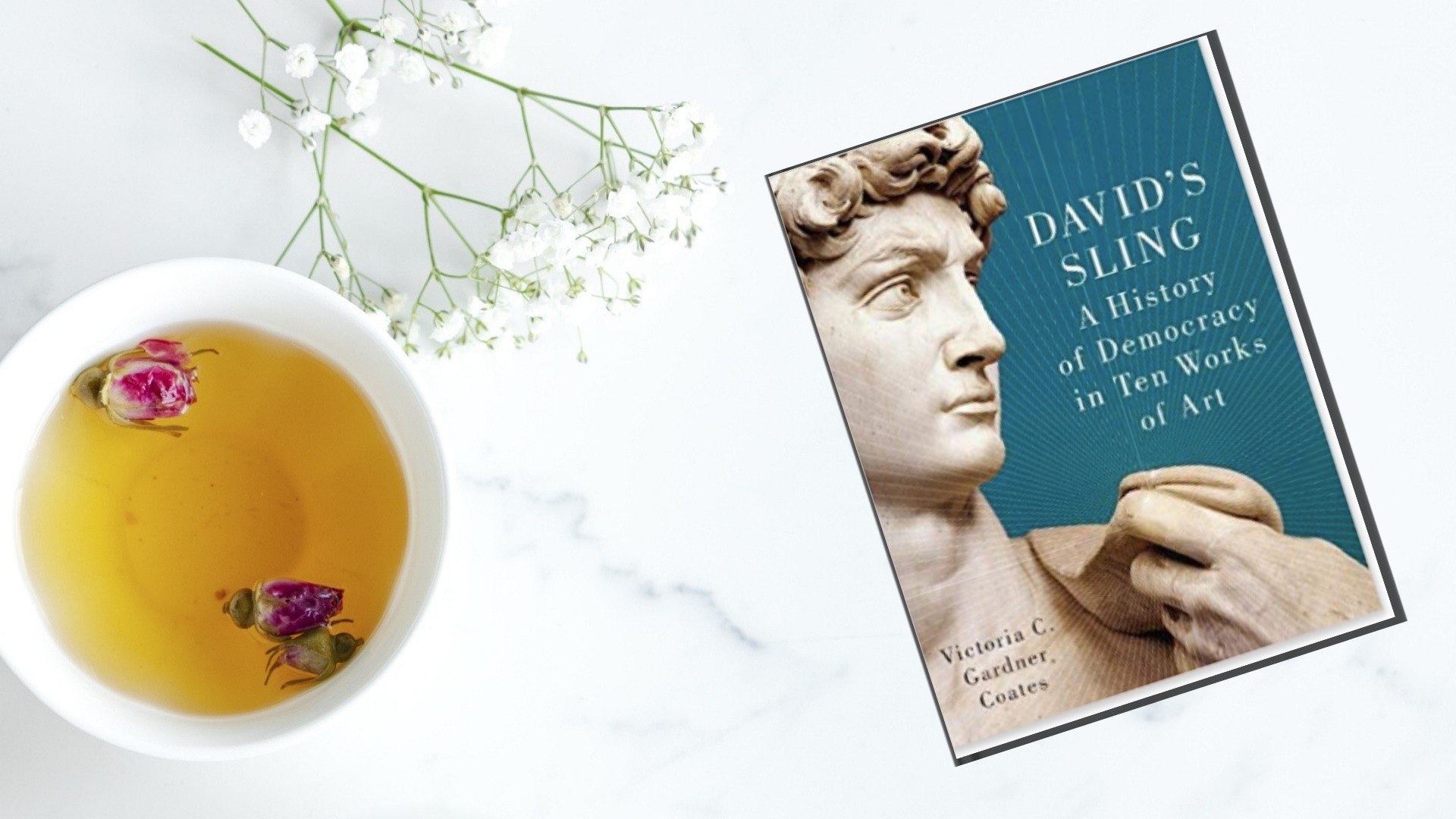 FindThisBook Book Review - David's Sling