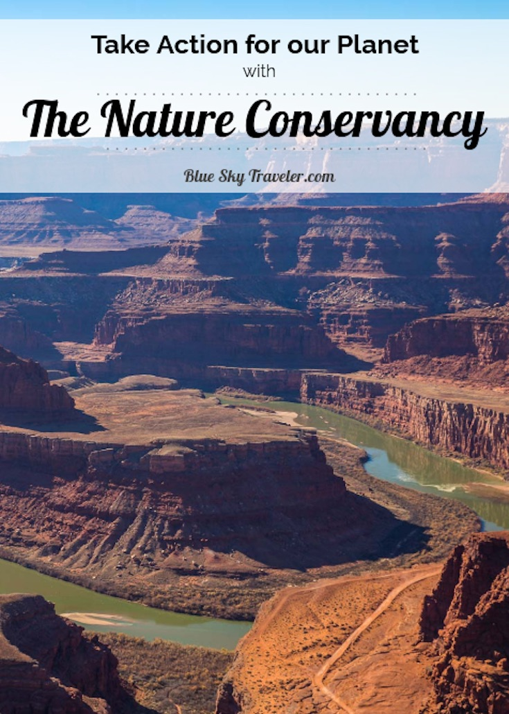 PIN IT - The Nature Conservancy - Reflection in Nature
