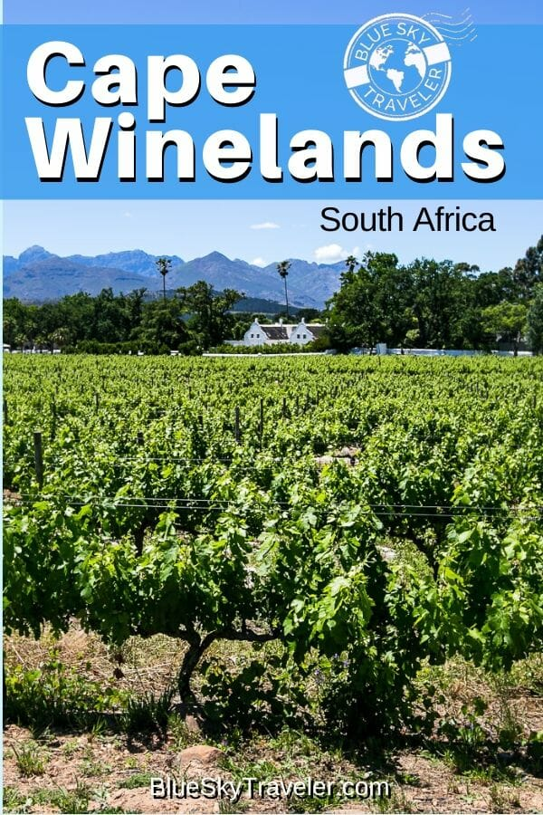 Cape Winelands • South Africa