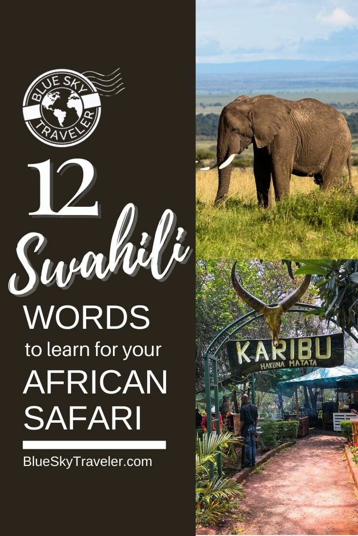 BlueSkyTraveler.Africa.V1.06.PIN .SwahiliWords