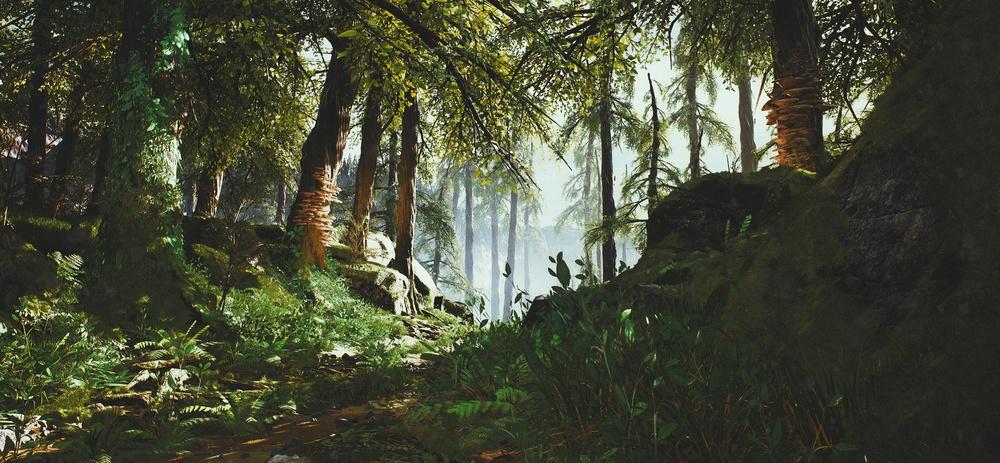 La forêt est un endroit où l'on peut être entièrement soi-même