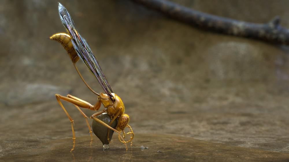 Les insectes sont l'avenir de l'alimentation