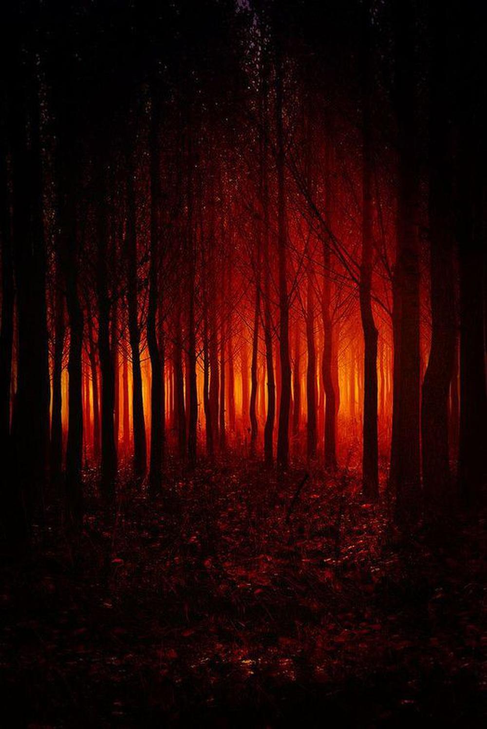 Notre peur innée de l'obscurité a disparu lorsque l'homme a maîtrisé le feu