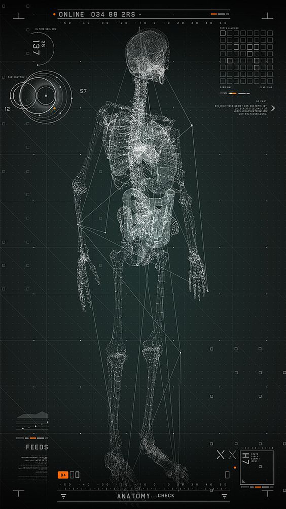 [Holon] Humans are simultaneously a separate individual and a part of a larger organism
