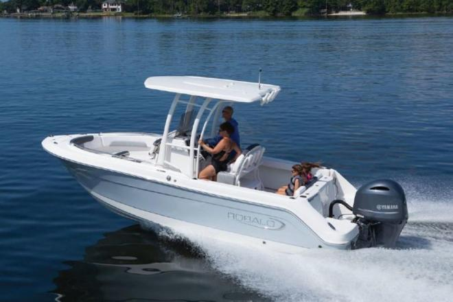 2021 Robalo 222 Explorer - For Sale at Coopersville, MI 49404 - ID 195337