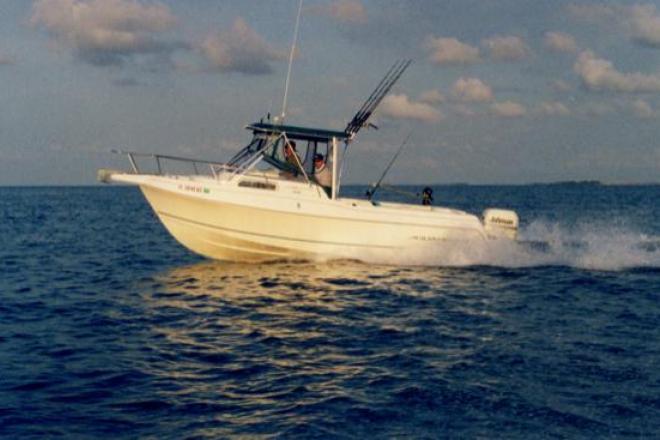 1998 Aquasport 245 Explorer