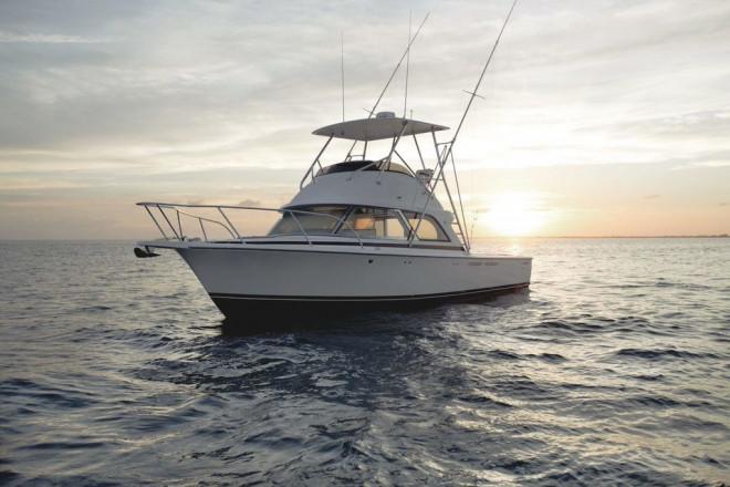 2022 Bertram 35 Flybridge Sportfish
